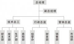 公司组织结构图