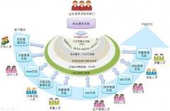 企业决策组织