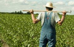 我不知道第一个农民是谁,但我想当最后一个