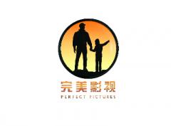 影视文化投资制作及发行机构——北京完美影视传媒股份有限公司