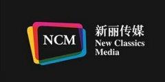 电视剧、电影、网络剧制作及发行商——新丽传媒股份有限公司